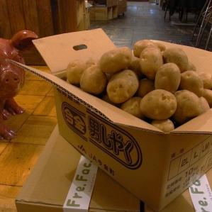 """在充满自负的土豆""""今金男人shaku""""销售时"""