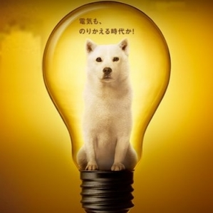 Electricity bill becomes cheaper in SoftBank?