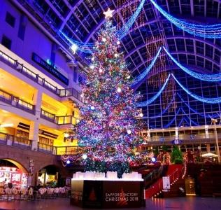 2018 점보 크리스마스 트리 점등 중