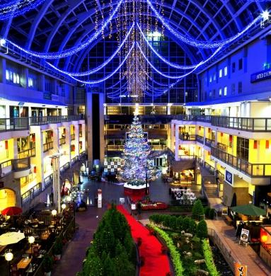 Under jumbo Christmas tree lighting☆